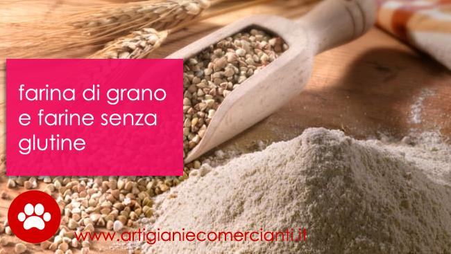Farina di grano tipologie e alternative