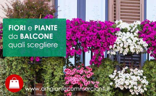 piante e fiori da balcone quali scegliere con quiinzona